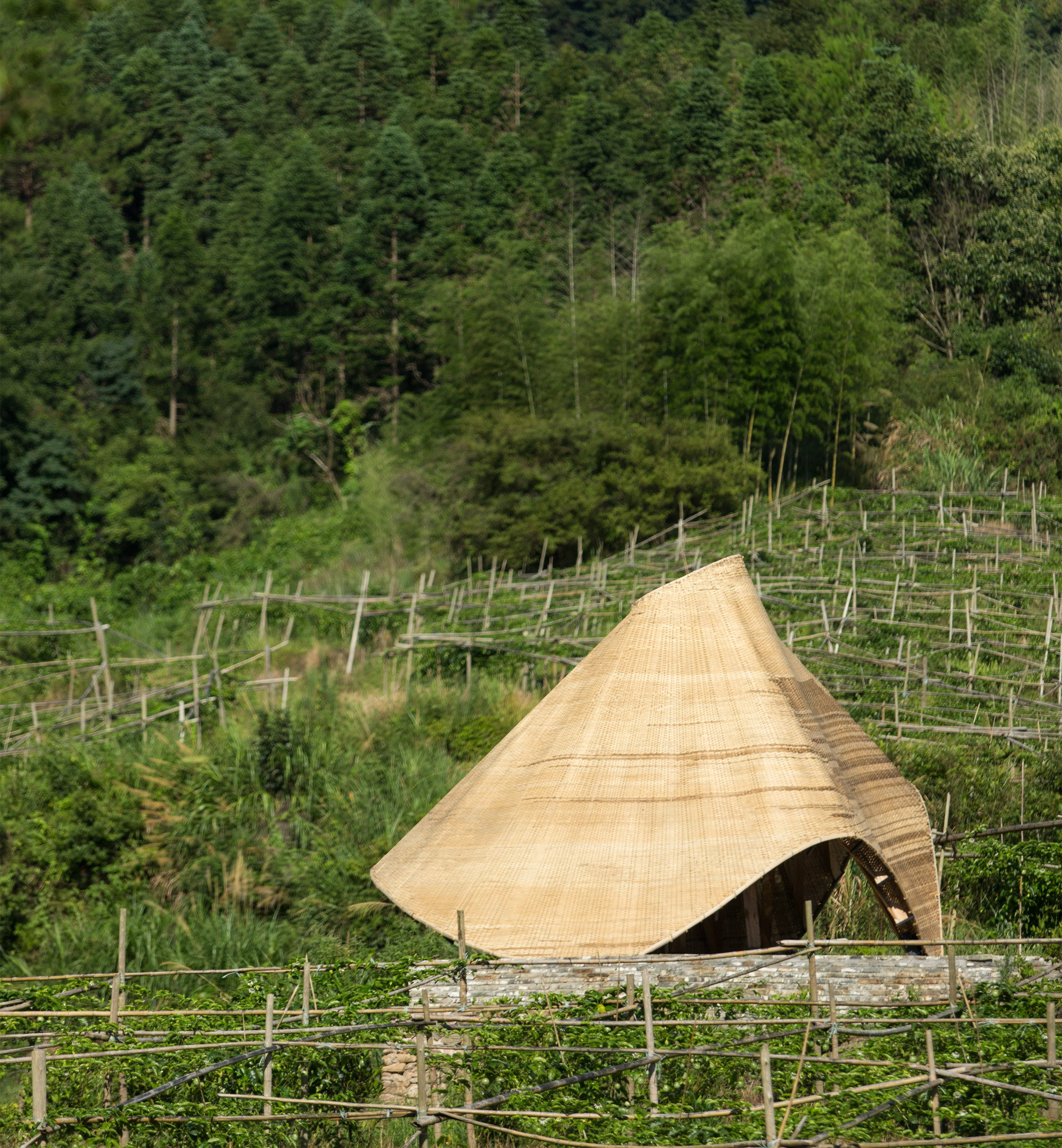 """Students """"reinvigorate"""" traditional bamboo weaving with digital technologies for Sun Room pavilion"""