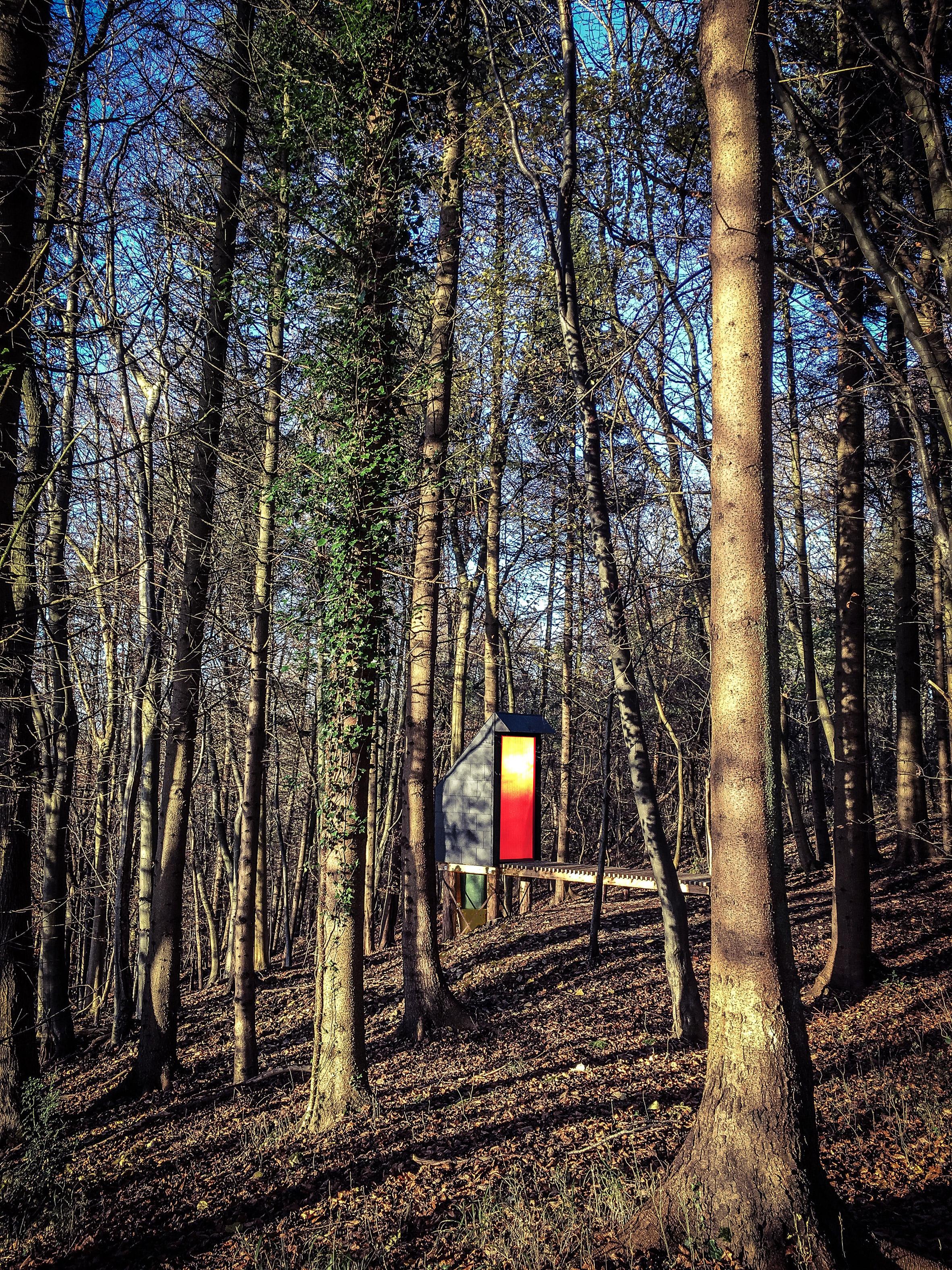 Invisible Studio designs composting toilet for woodland workshop